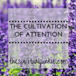 cultivation of attention