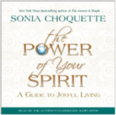 shelfie-sonia-choquette-power-spirit
