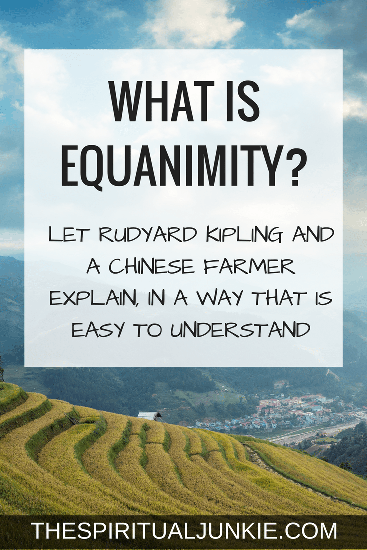 What is equanimity?